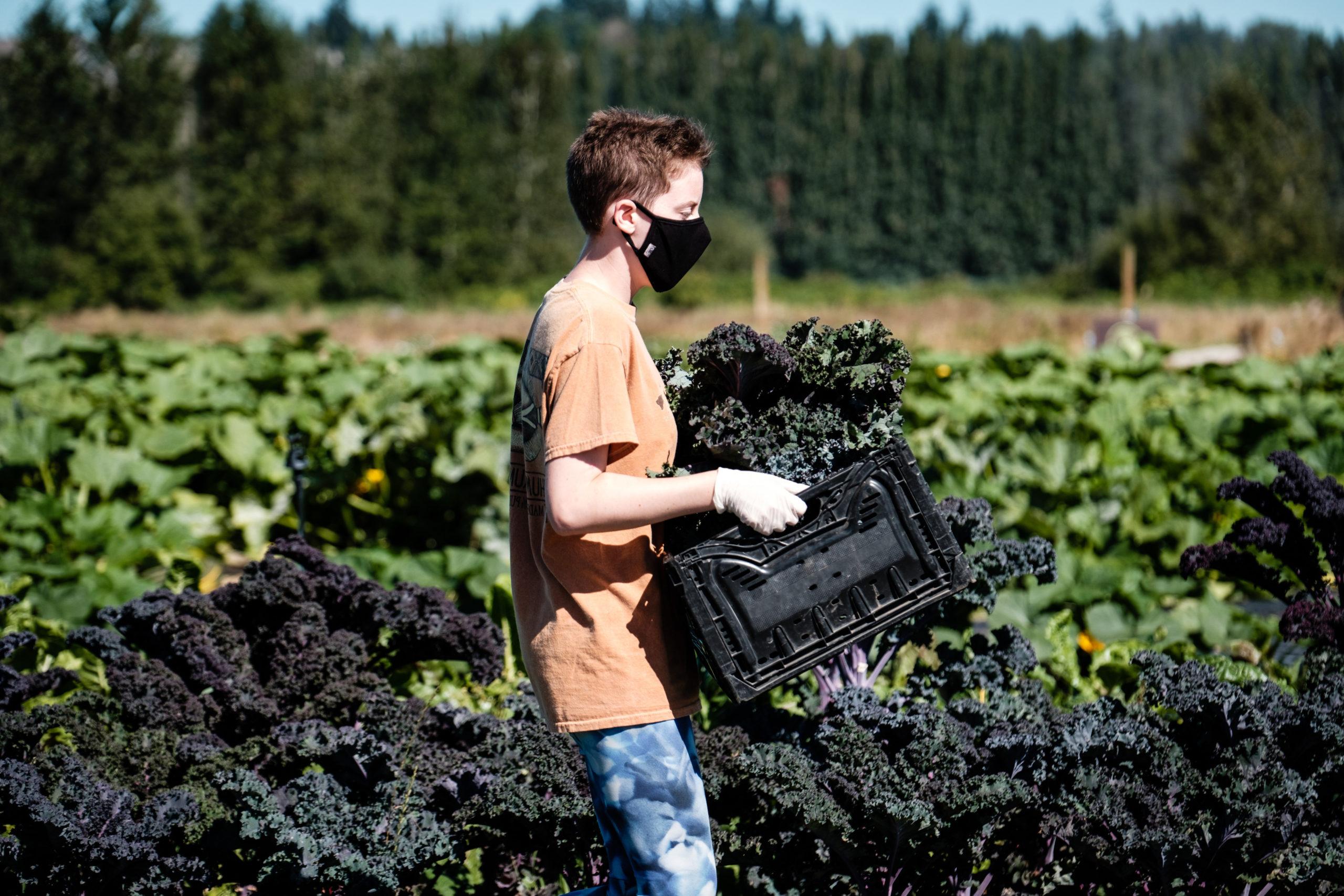 Sammamish Valley Farm Worker